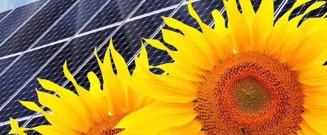 Tiszta környezetkímélő napenergia